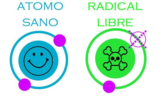 Radicales-libres-1