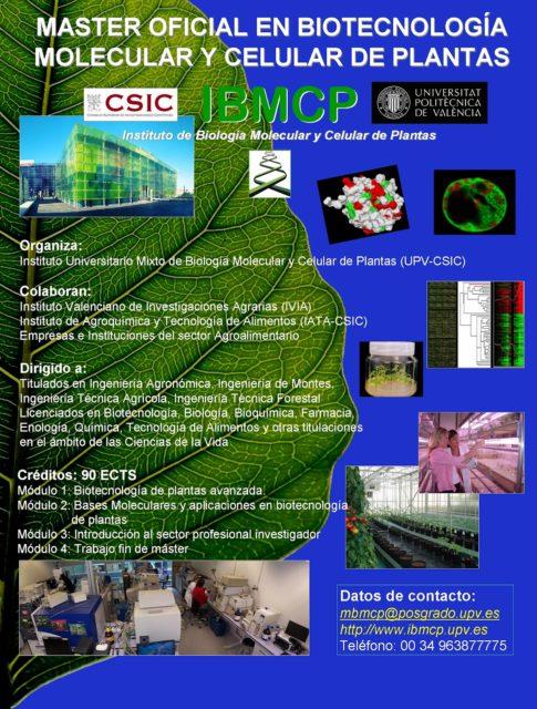 Abierta la inscripción para el máster de Biotecnología molecular y celular de plantas.