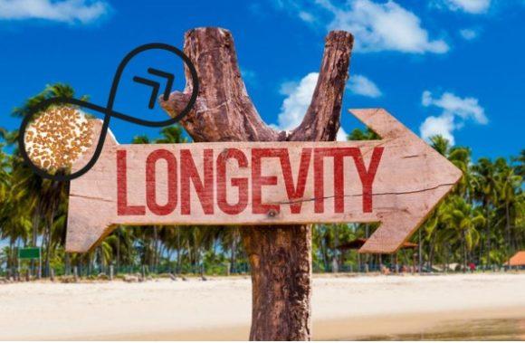 Un paso más cerca de conocer los secretos de la longevidad